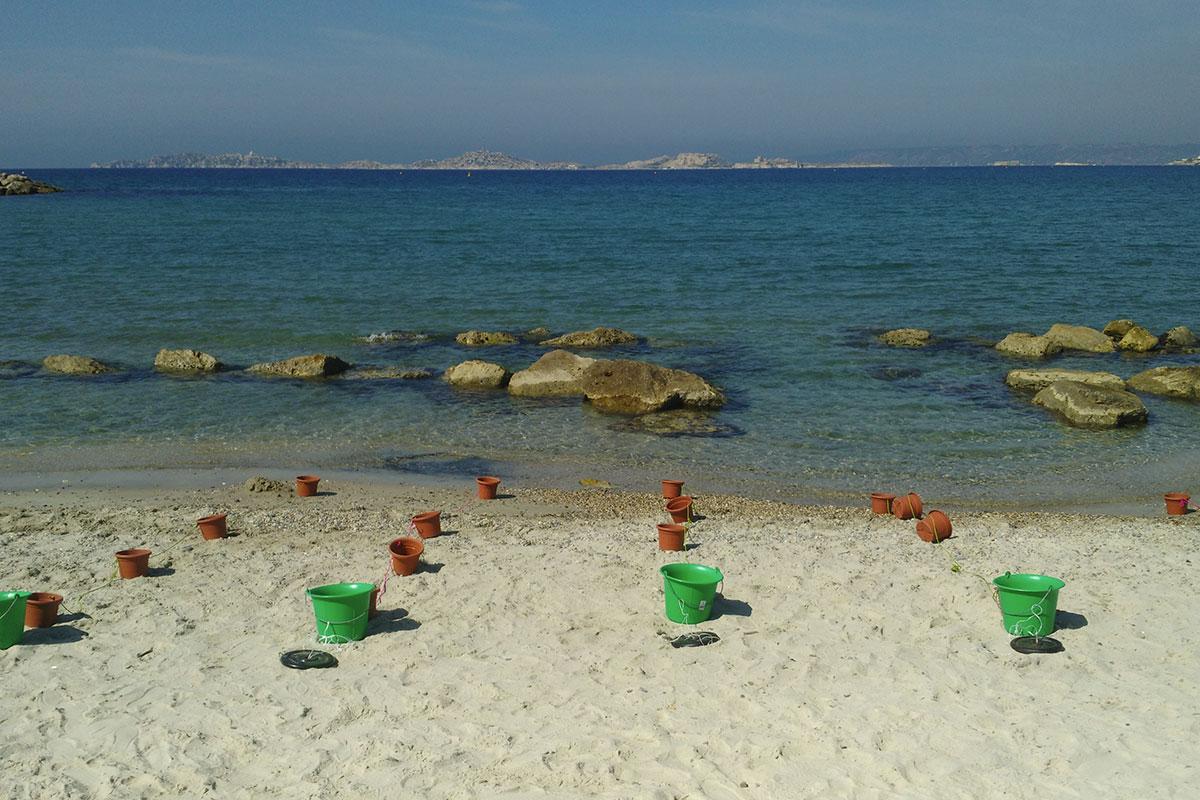 Team beach team building plage Côte d'Azur