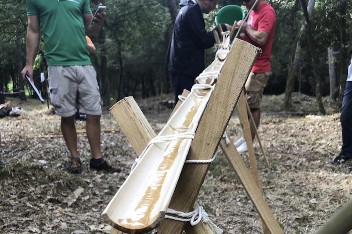 Eco-Forest Team Building Développement Durabl