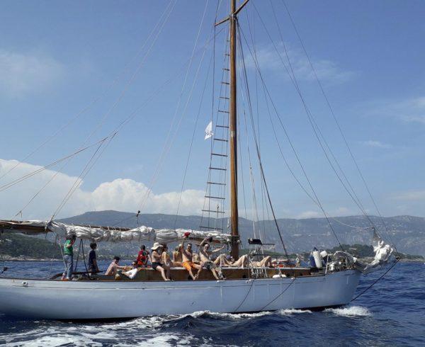 Organisation régate vieux gréements Côte d'Azur
